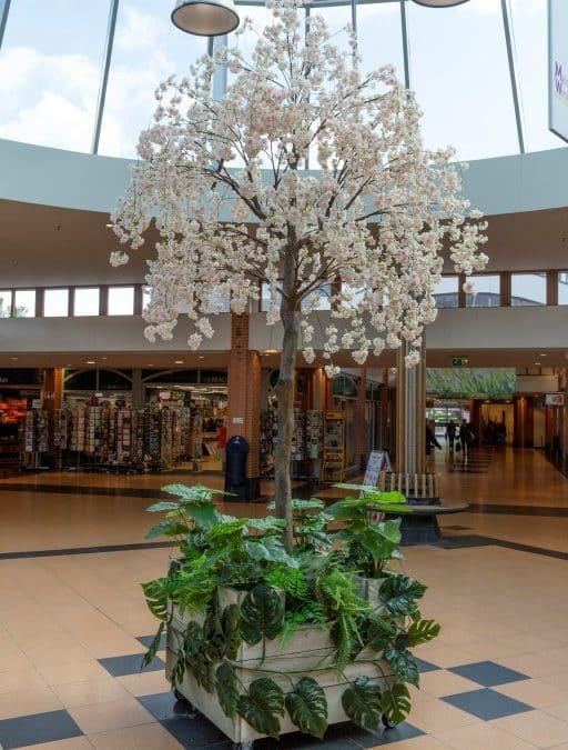 Wensboom Winkelcentrum Malden!